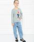 Свитшот хлопковый с принтом Ralph Lauren  –  МодельОбщийВид
